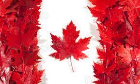 宁波货物海运到加拿大海运费