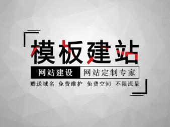 模板网站建立|重庆模板网站建造公司-遥阳科技