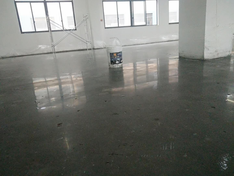 惠州混凝土固化处理