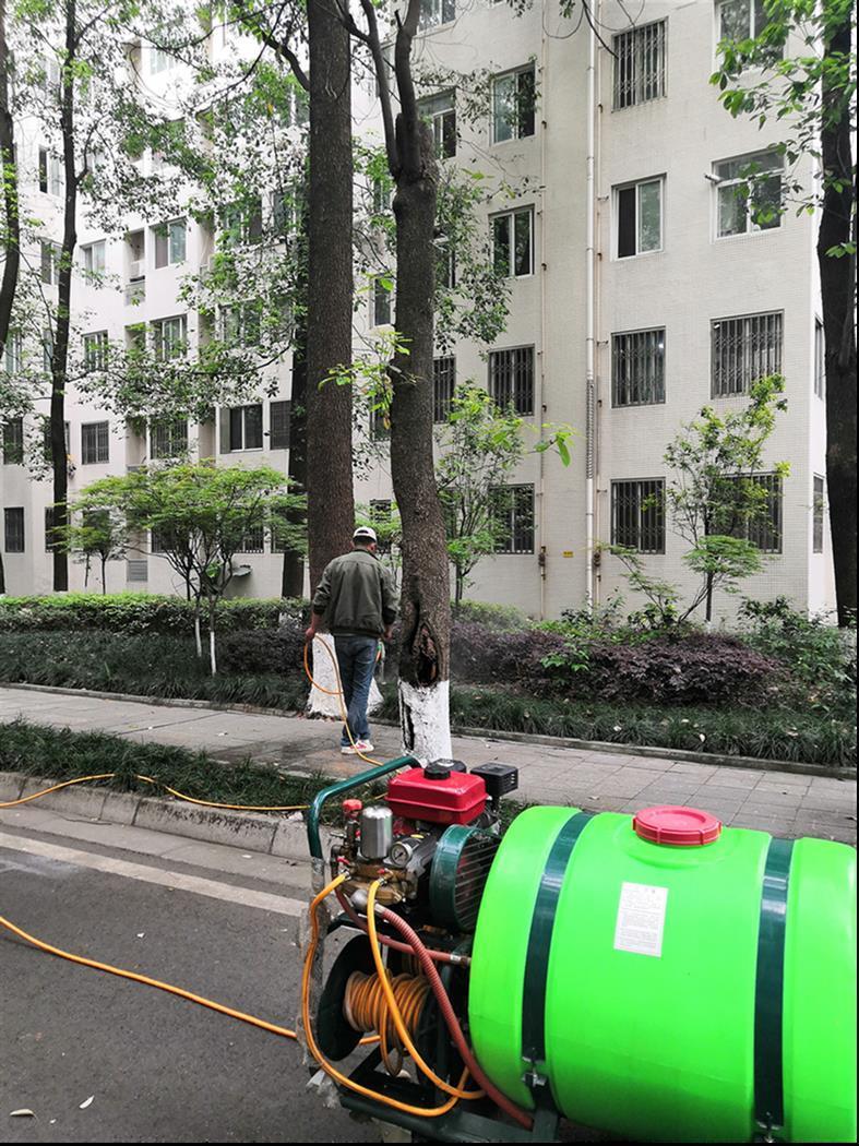 四川浦江城区灭白蚁公司