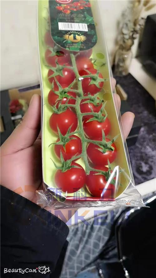 知名托盒蔬菜包装机批发