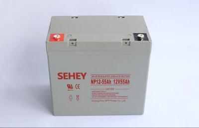 原装西力蓄电池原装正品