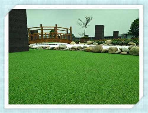 保定绿色塑料草坪网厂
