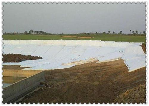 衡水公路盖土网厂