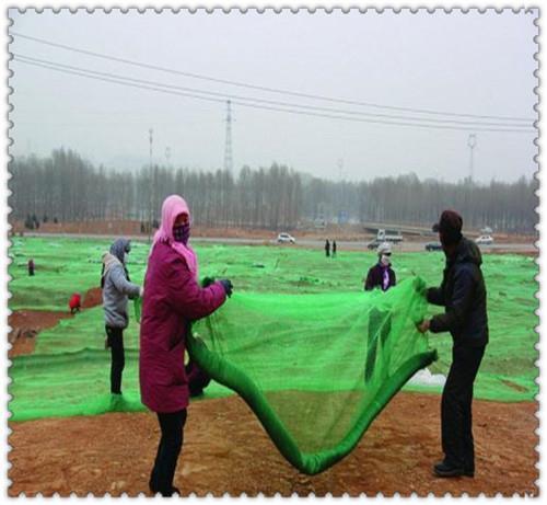 洛阳绿色盖土网厂商