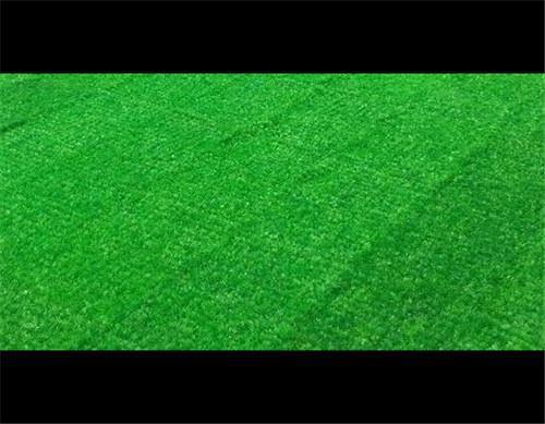 莆田人工塑料草坪定做