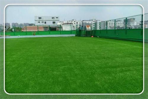 济宁幼儿园草坪规格