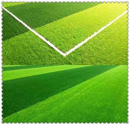 绵阳足球场草坪网