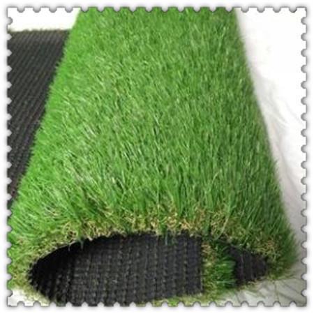 柳州足球场草坪网