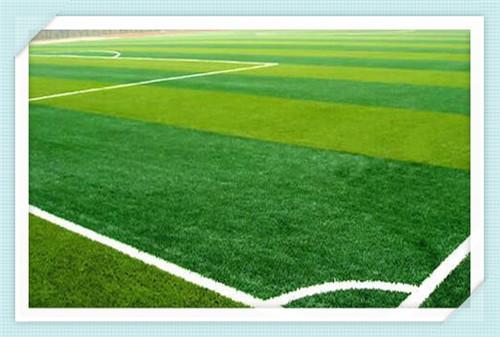 北京草坪网定做