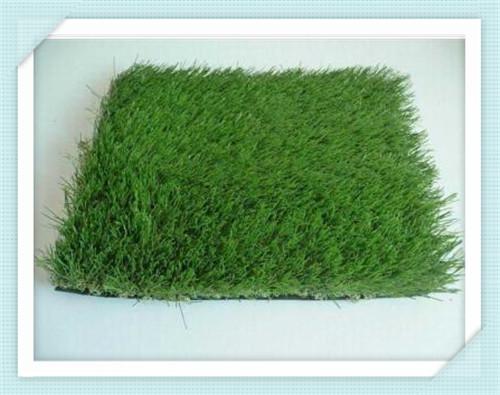 绵阳草坪网价格