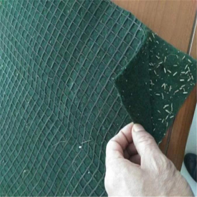 滁州国产植生毯