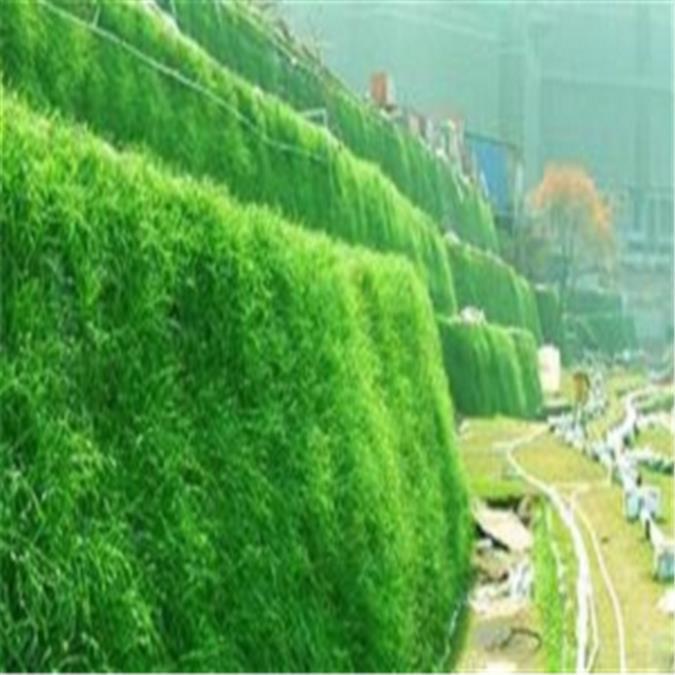 滁州绿化生态袋