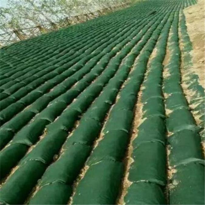 新乡绿化生态袋