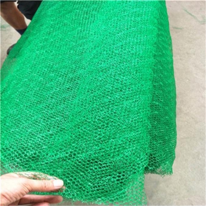 杭州植草三维植被网