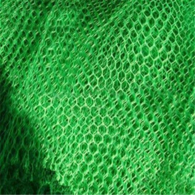 阜阳环保三维植被网