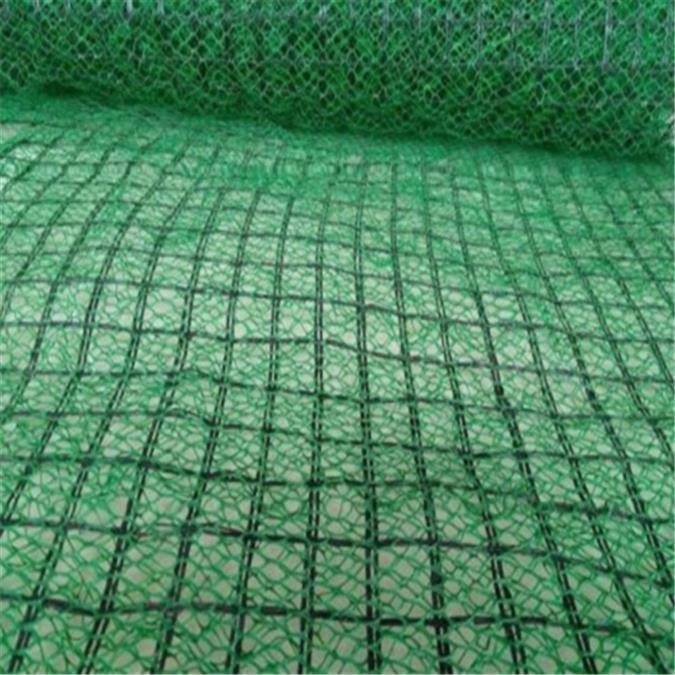 大庆国产三维植被网