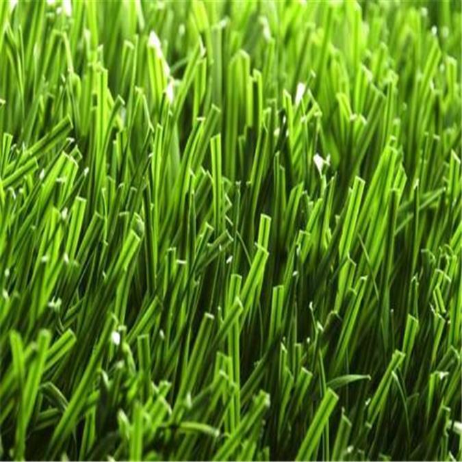 泉州环保人造草坪