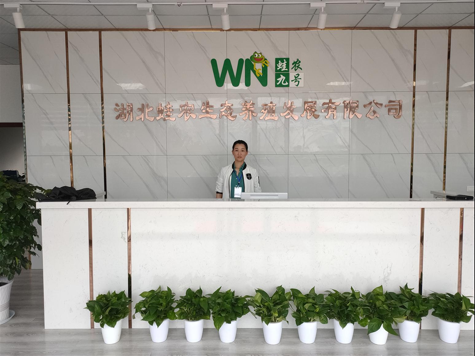泰州黑鱼苗的养殖技术定制