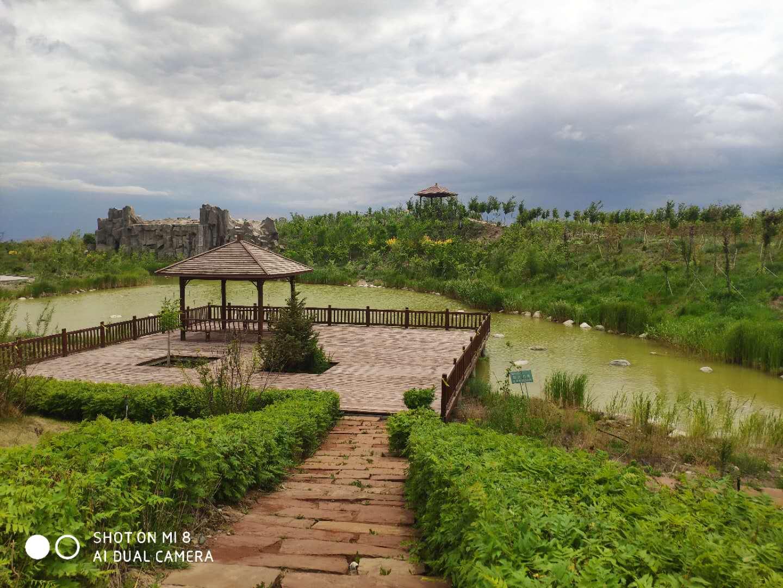 乌鲁木齐公墓销售