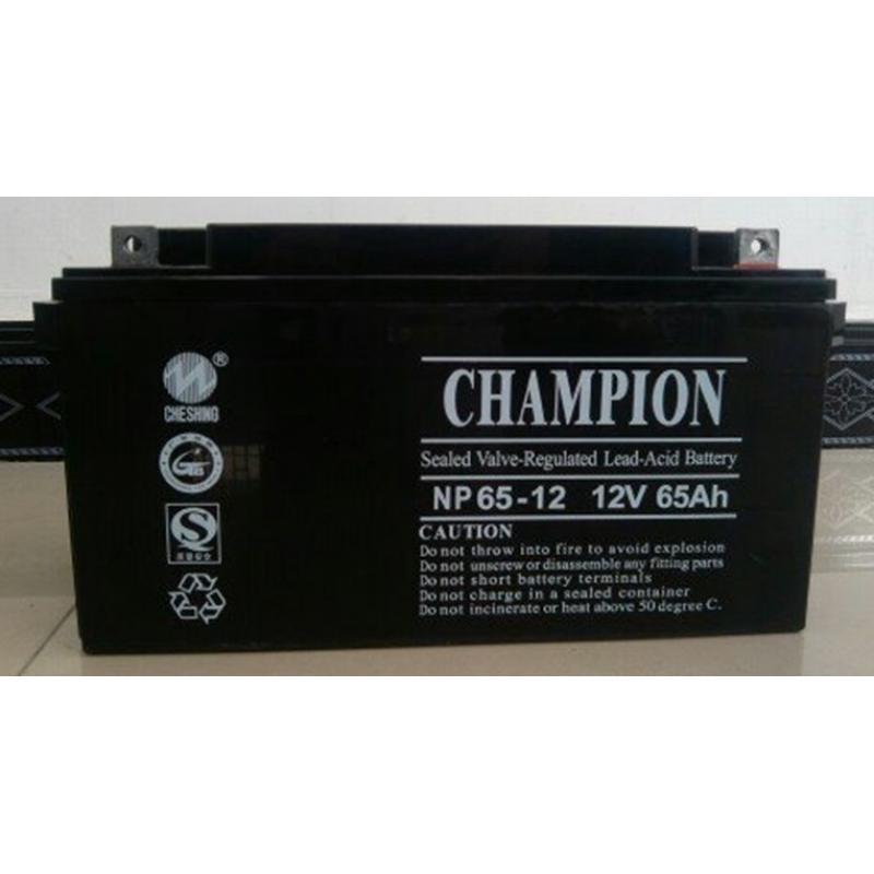 原厂冠军蓄电池12V7AH