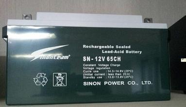 应急赛能蓄电池SN-12V38CH