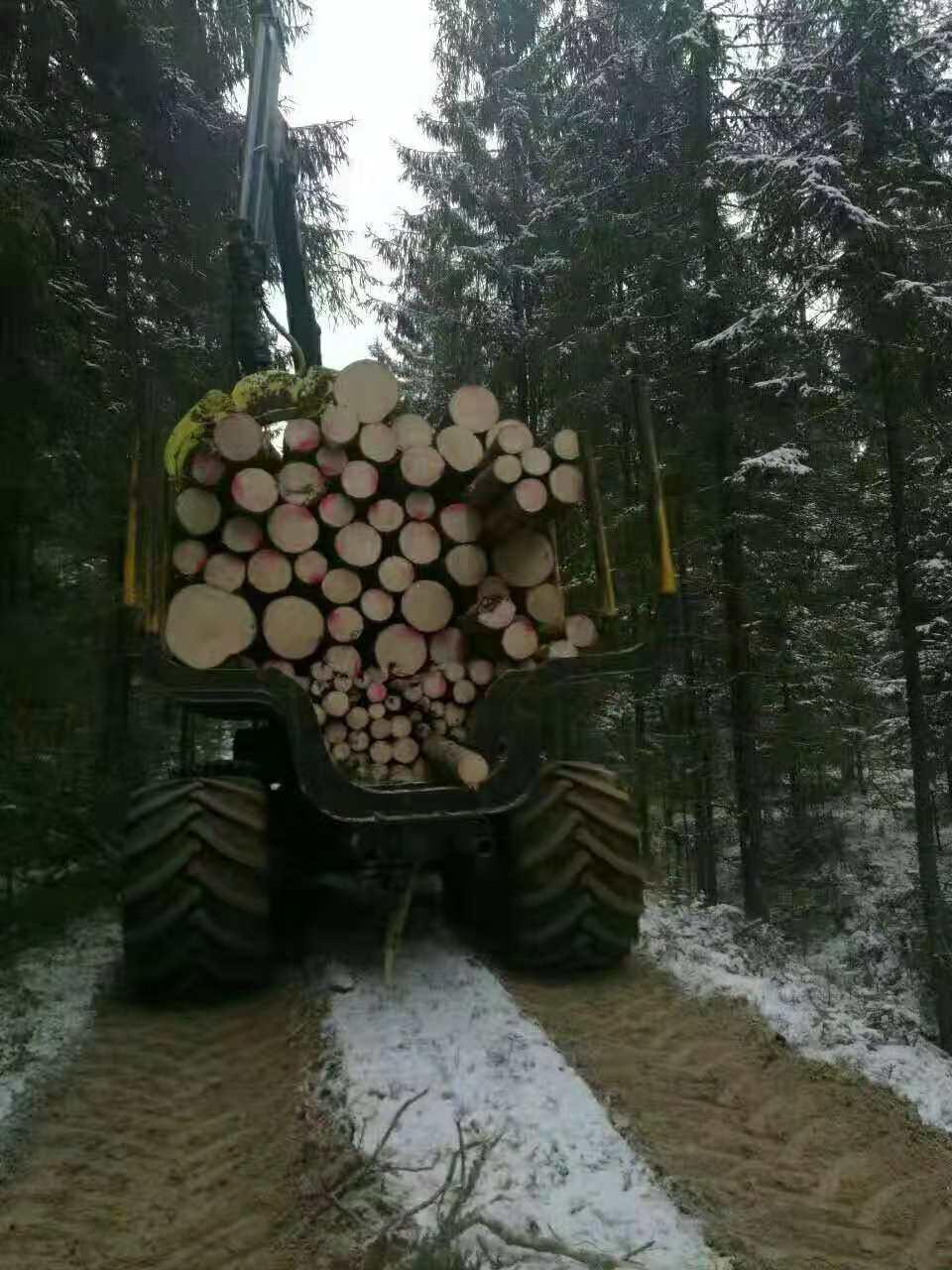 河北芬兰木定尺厂家