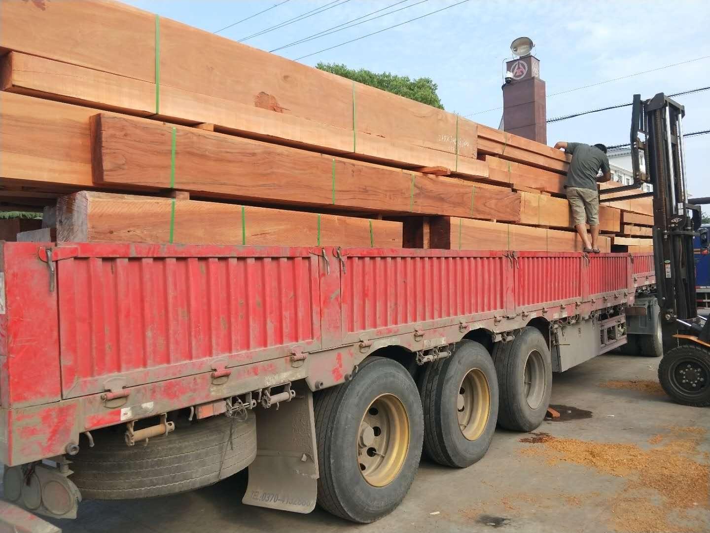 天津山樟木进口商