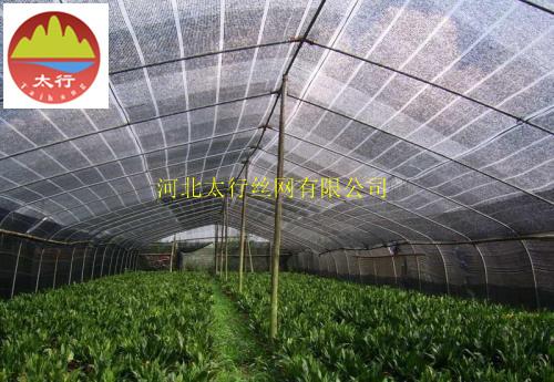 惠州4针遮光网