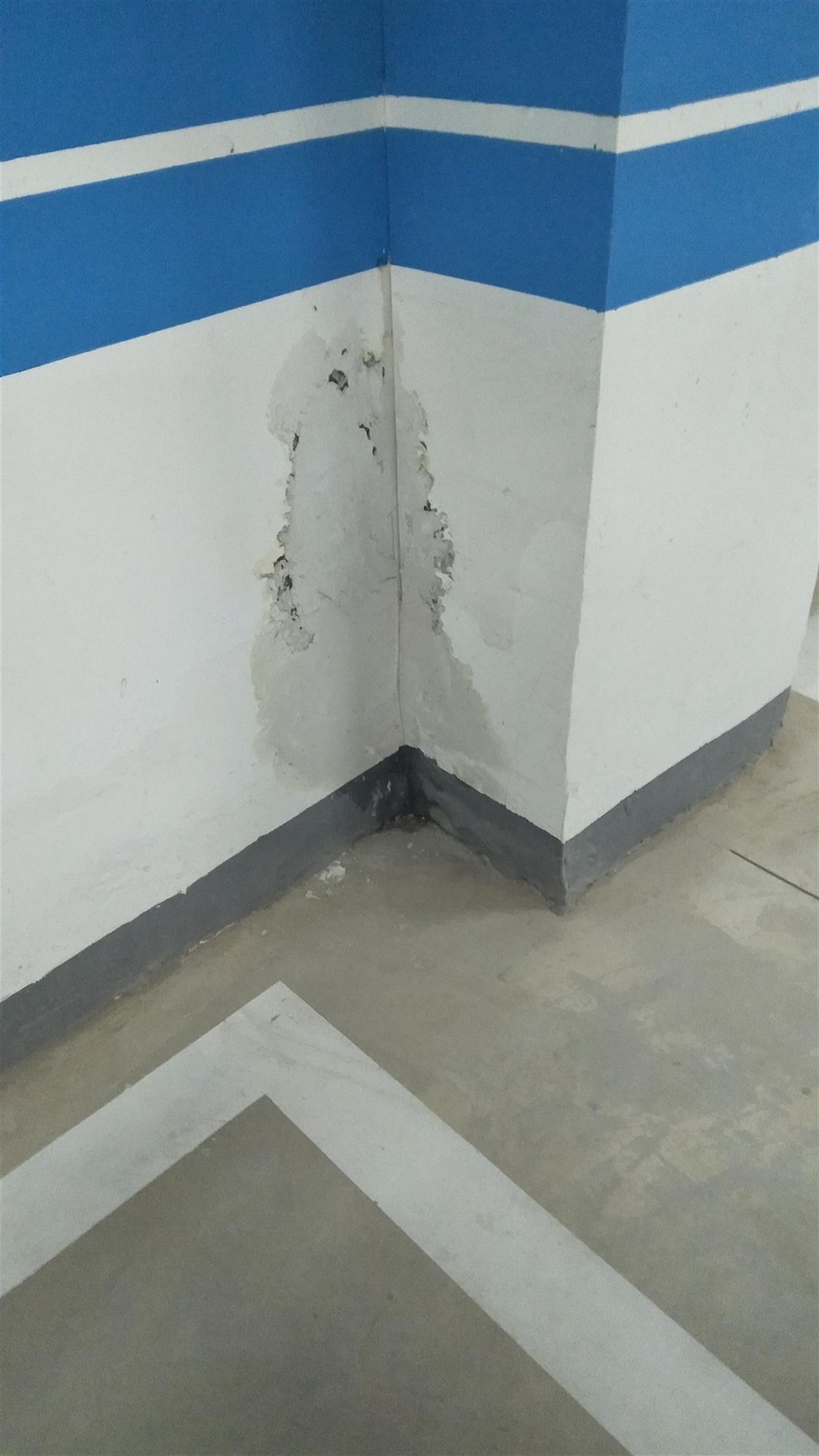 电梯漏水处理费用