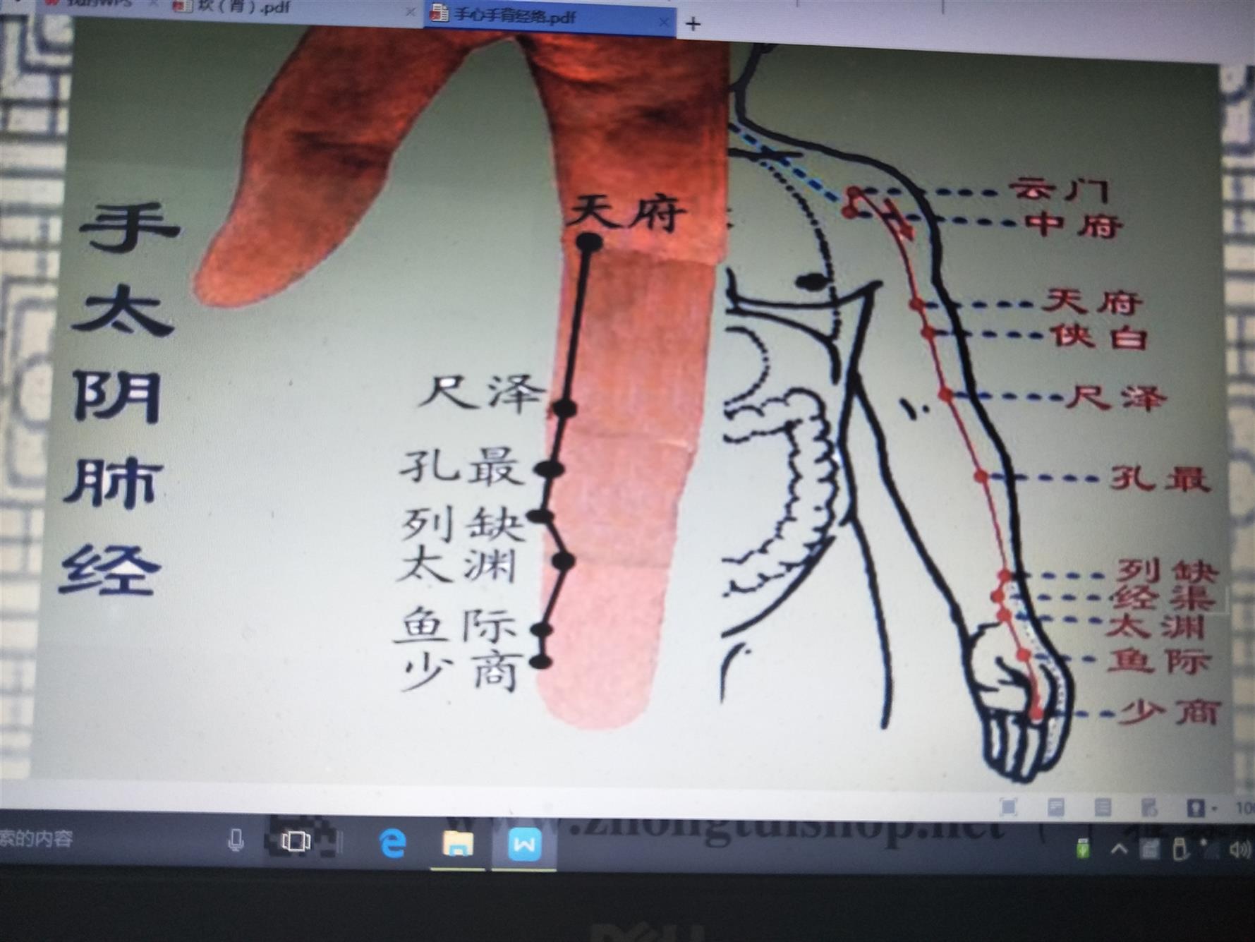 上海类疼痛病培训费用