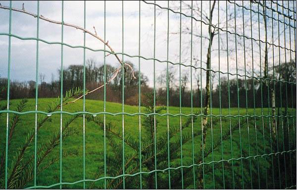 足球场护栏网厂