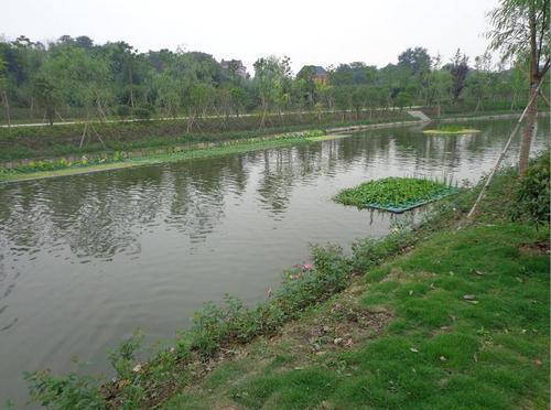 沈阳黑臭河道生态治理方案价格