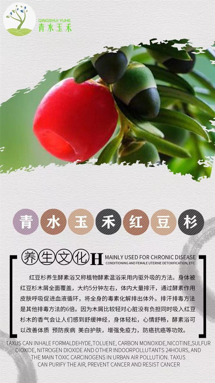 重庆酵素浴升温粉加盟合作