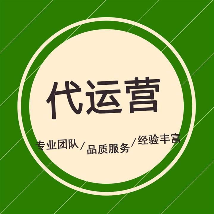 黑龙江代运营团队