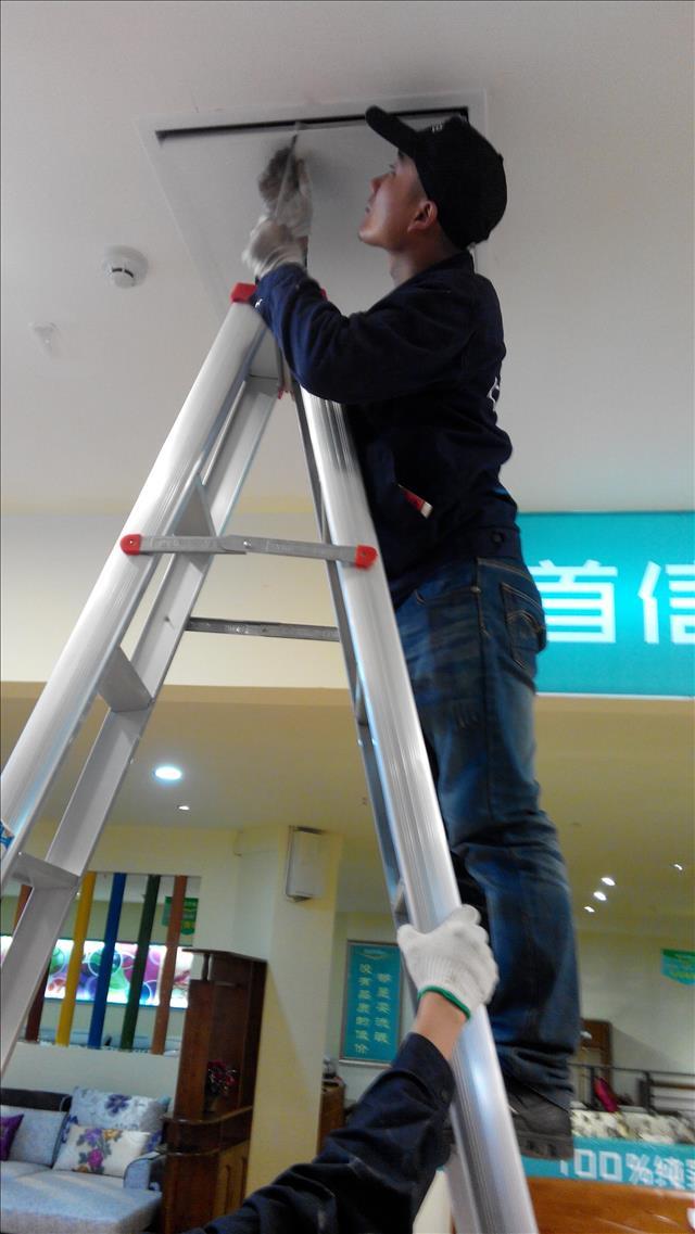 崇州超市专业家庭灭跳蚤公司