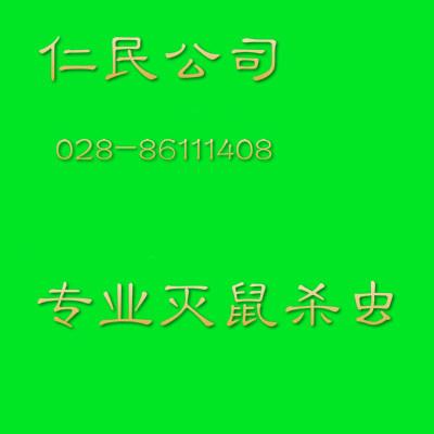 川师景区专业家庭灭跳蚤公司