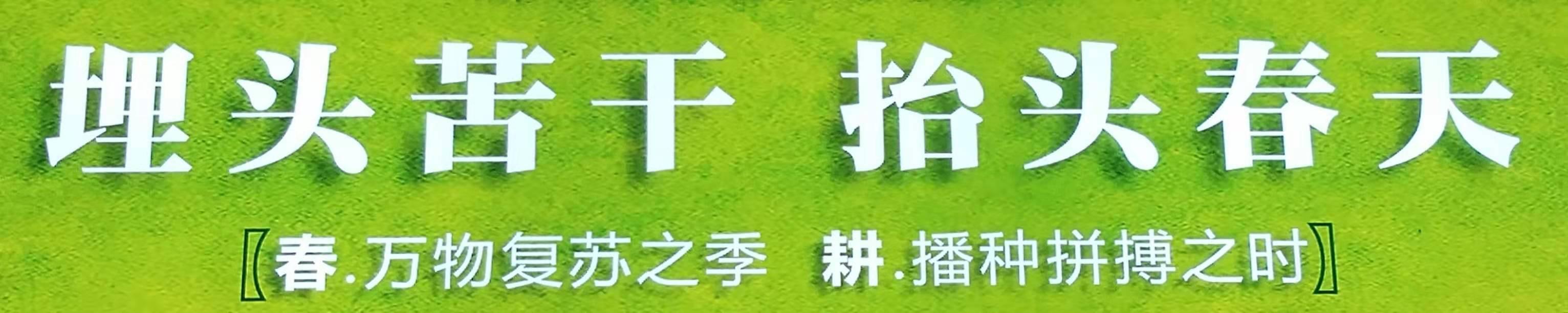 广州岩棉板厂商