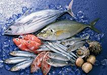 法国水产品进口报关案例分享