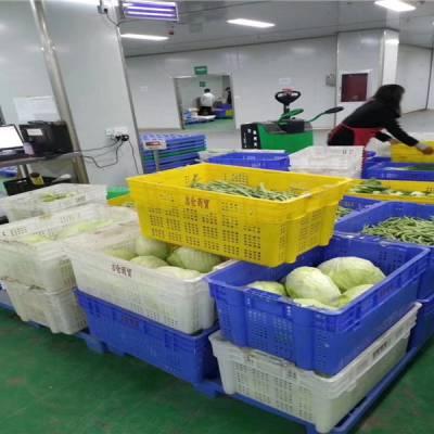 惠东食堂蔬菜配送公司电话