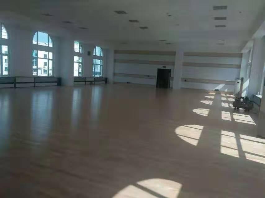 儋州枫木运动木地板厂