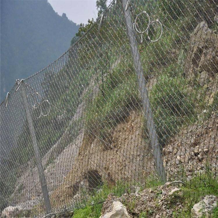 玉林被动防护网费用