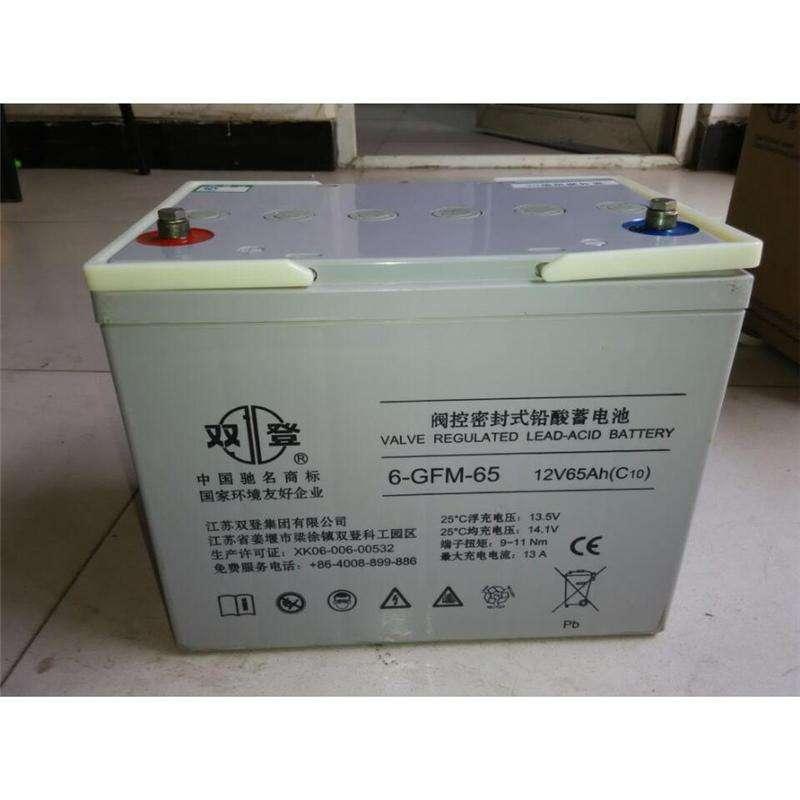 双登蓄电池6-GFM-150