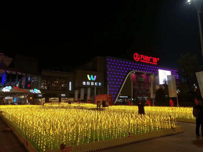 安庆唯美灯光艺术展厂商