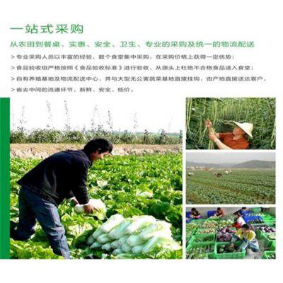 松岗食堂蔬菜配送公司批发价格