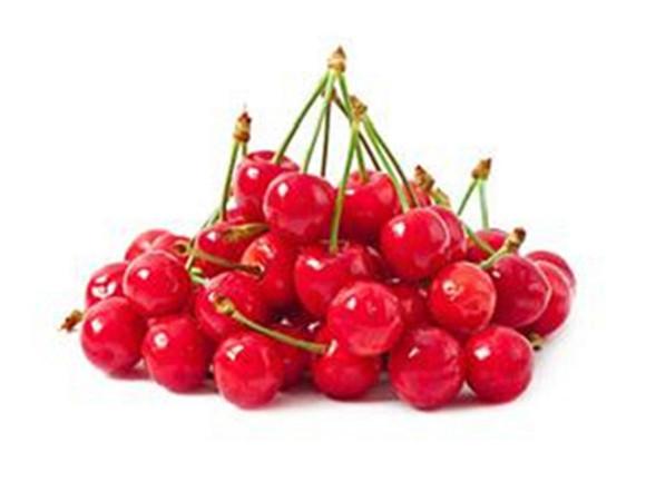 矮化樱桃树苗批发价格 矮化樱桃树苗几年才能结果