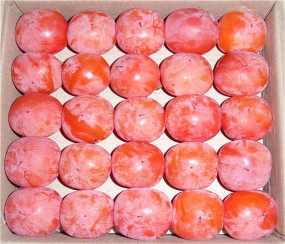 黑甜柿子苗新品种黑甜柿子苗免费提供样品