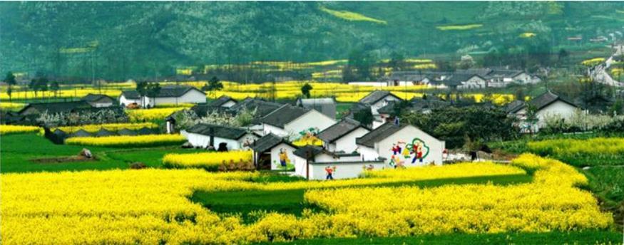 武汉乡村旅游融资公司