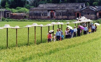 南昌乡村旅游规划公司