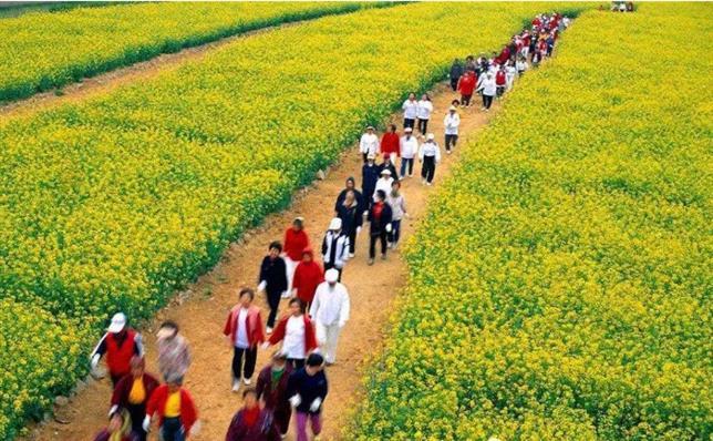 武汉10大康养旅游营销策划成功案例